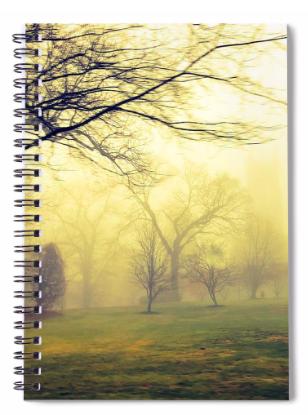B.A.D.B. Notebook